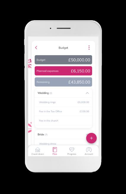 Wedding planner wedding budget